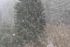de-1e-sneeuw-in-lautenthal-02-12-12-2