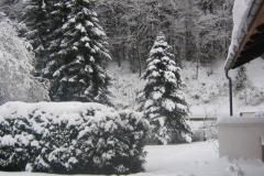 mooie-sneeuwtuin-op-11-dec-2012-3